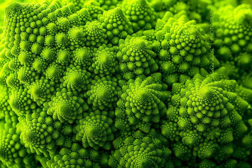 SacredGeometry_Romanesco Broccoli