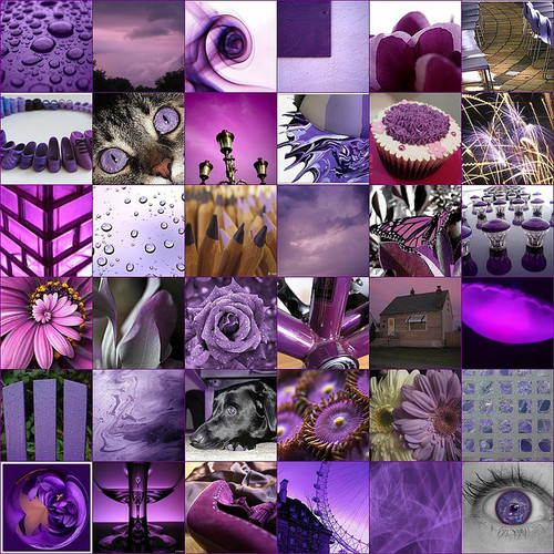 ColorTherapy_Purple
