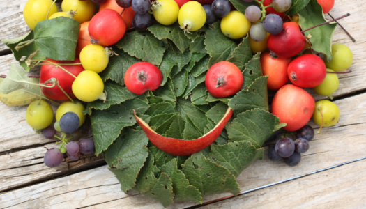 Foods that Boost Your Mood