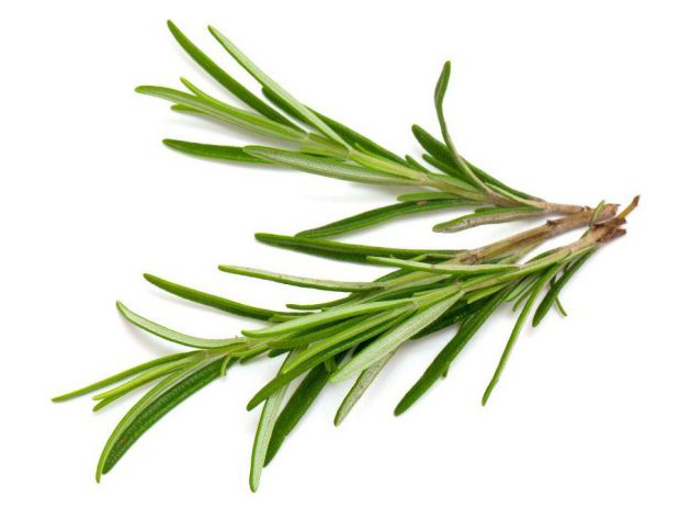 Everything_Soulful_Mood_Enhanging_Herbs_rosemary