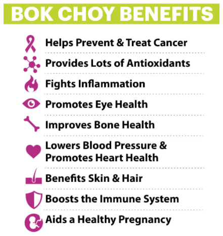 everything_soulful_bok_choy_benefits