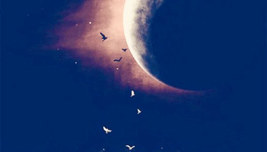New Moon in Sagittarius:  Out with the Old In with the New