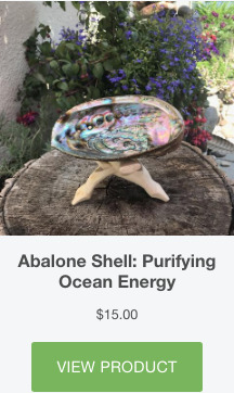 everything_soulful_abalone_shell